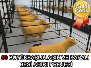 50 Büyükbaşlık Açık ve Kapalı Besi Ahırı (Çiftliği) Mimari Projesi (dwg)