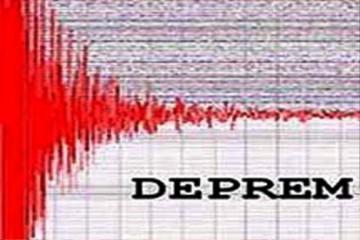 Deprem Mühendisliği Dönem Ödevi
