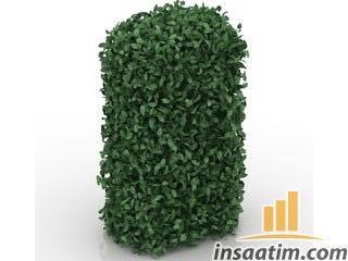 Bahçe Bitki Çizimi - 3D Model