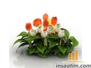 Çiçek Çizimi - 3D Model